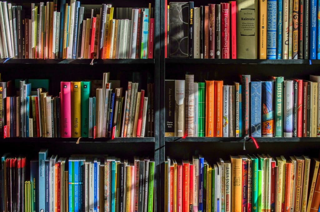 bookshelf of books- books about immigration